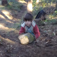 Angus rolling a rock