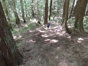 Finished - Catch berm done thanks to Andrew Wiley, Steve Vogel and Jonah.