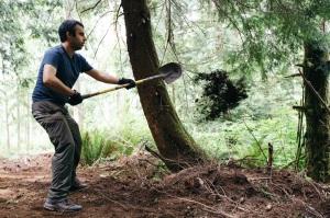 Abass shoveling out organic.