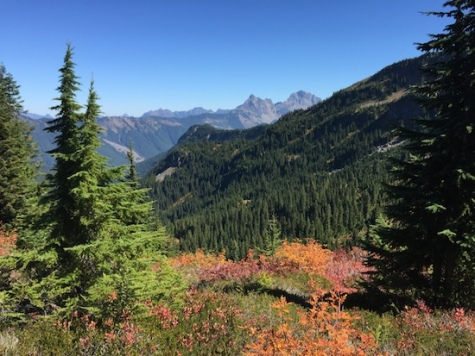 A view from Canyon Ridge Trail - the lone trail open to Mountain Bikers along the Mount Baker highway.