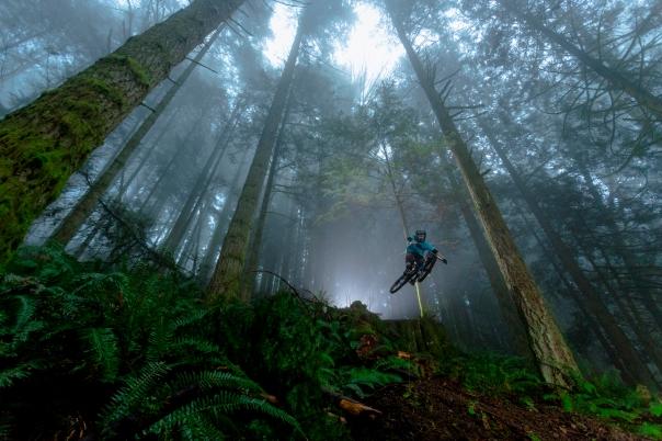Forgotten Trails