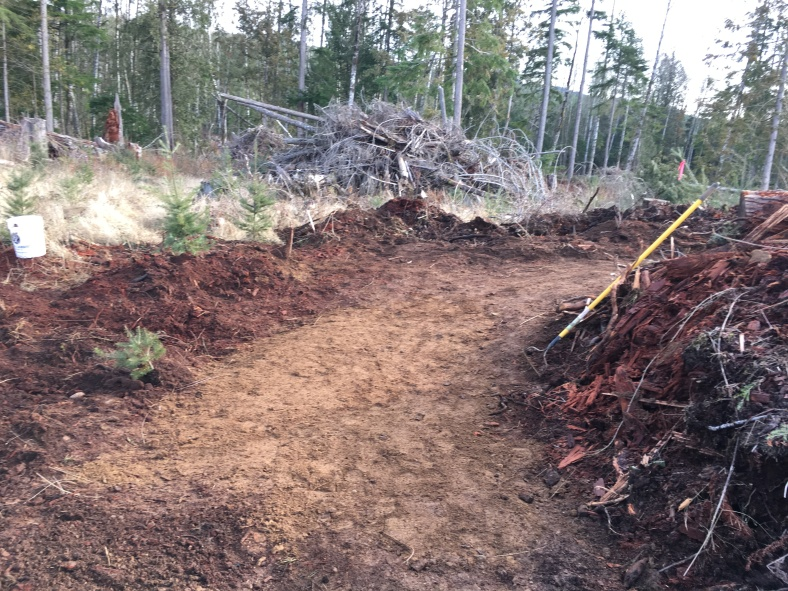 Fresh dirt on Cowbell.  Allout Trail day 2017