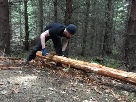 Trevor is debarking stringers on Evolution stump drop.